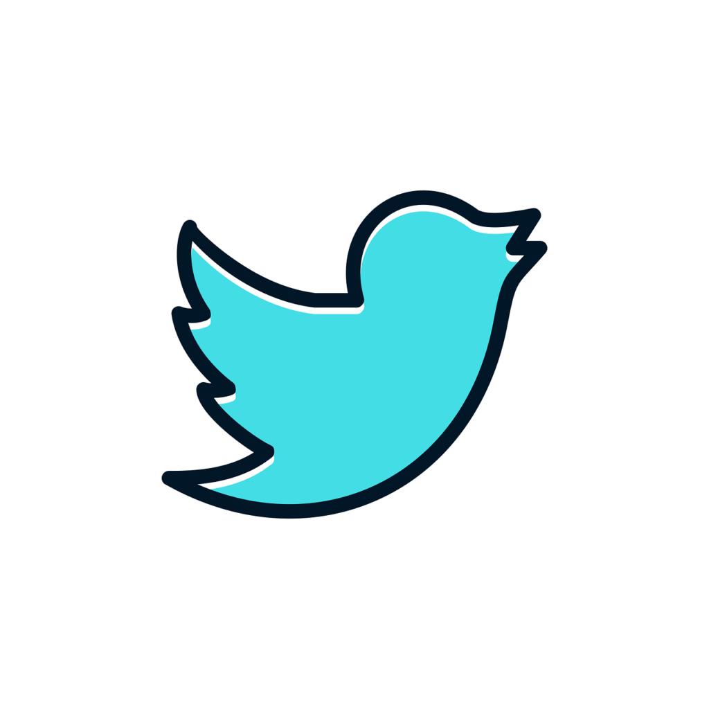 Twitter / Revue